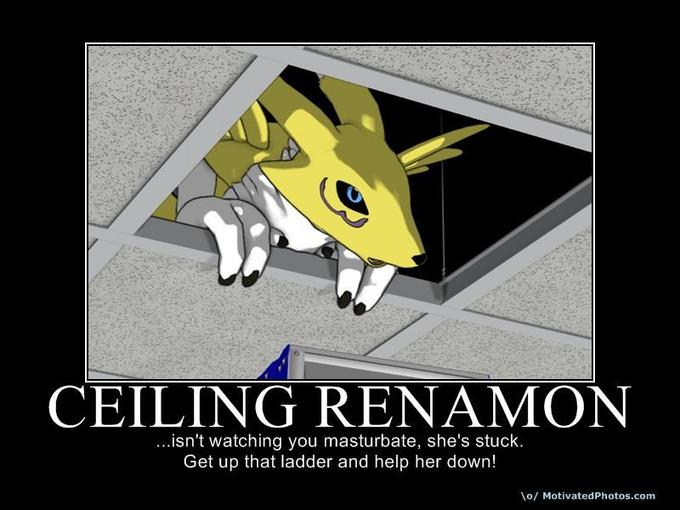 Ceiling Renamon
