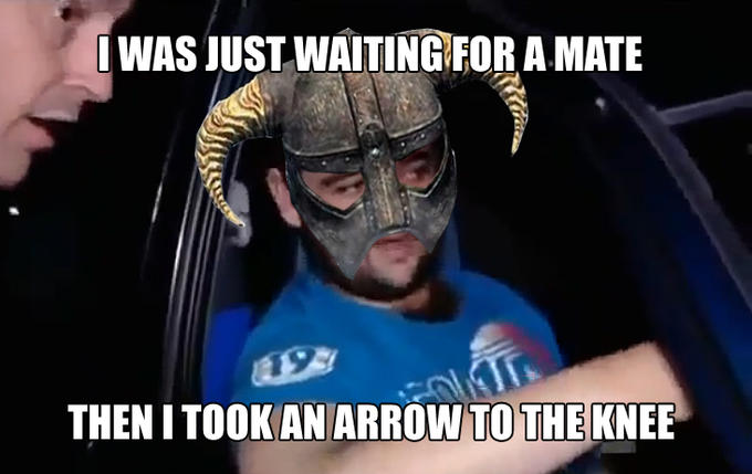 I Was Just Waiting For A Mate Then I Took An Arrow To The Knee