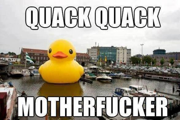 quack quack motherfucker