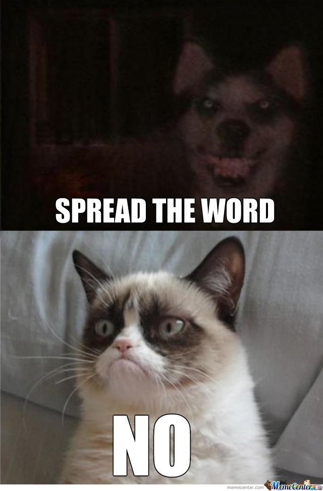 Smile.dog vs. Grumpy cat   Grumpy Cat   Know Your Meme
