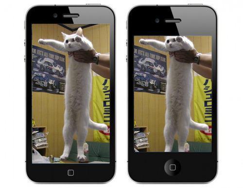 iPhone 5S vs. iPhone 5