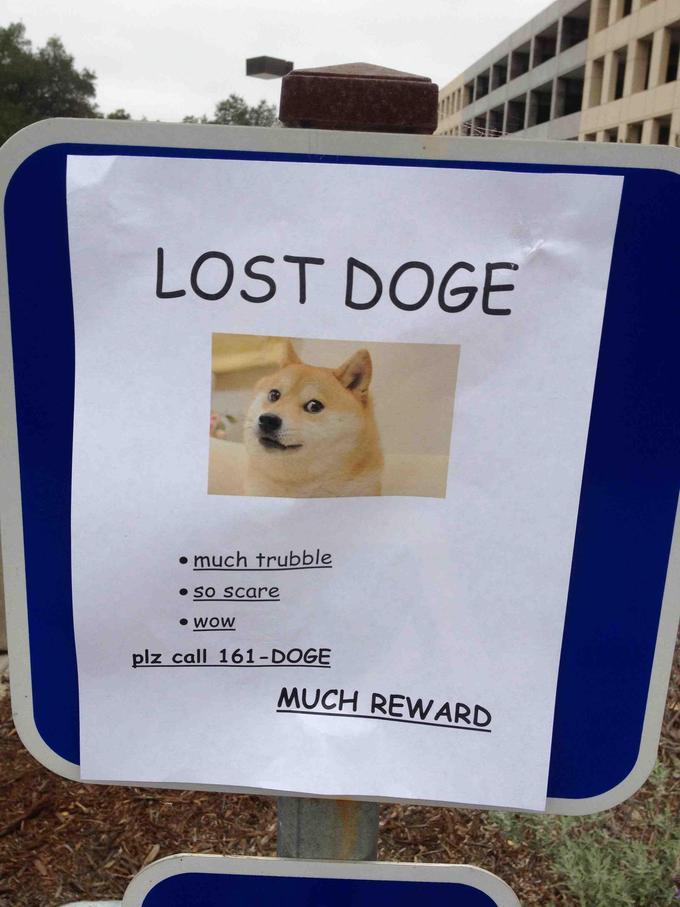 Doge meme. Wow. | Freakin' Awesome Network Forums