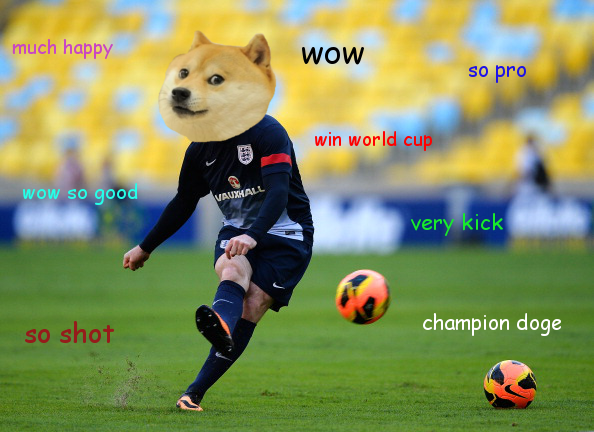 Doge can Football.