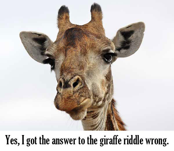 Giraffe Riddle - Got The Answer Wrong