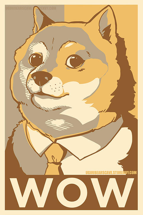 politician DOGE