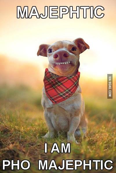 Phteven / Tuna the Dog | Know Your Meme - photo#3