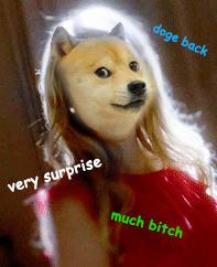 Surprise, Bitch