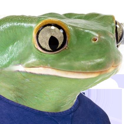 sadfrog irl