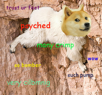 Climber Doge