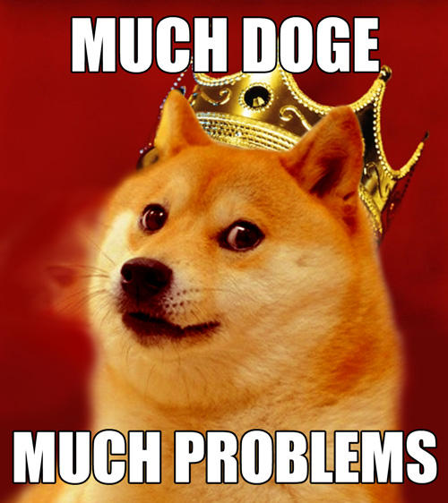 Notorious DOGE