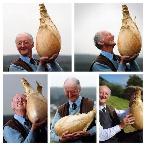 Onion Love