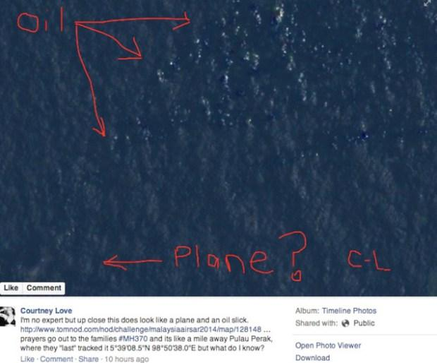 Did Courtney Love Find the Missing Malaysian Airlines Plane?