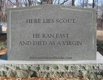 Here lies Scout...