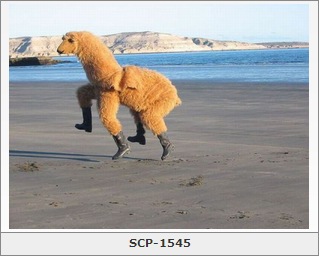 $50 that it can kill SCP-682