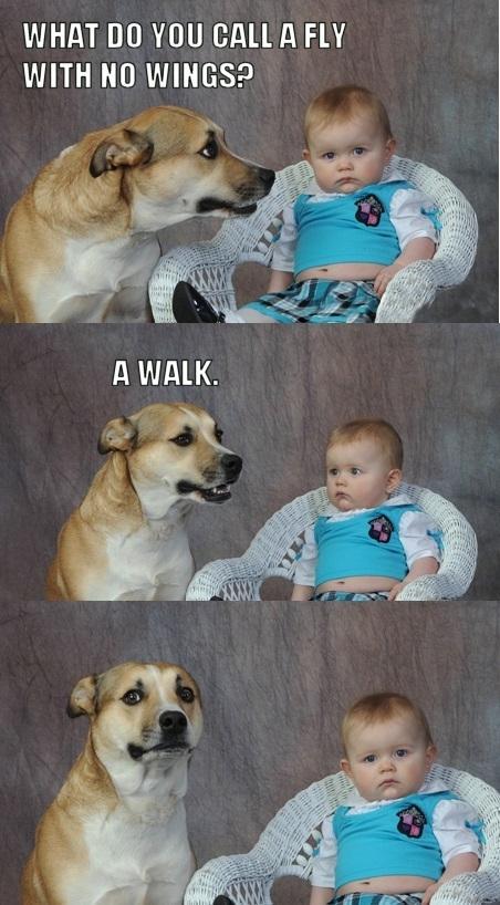 Original Dad Joke Dad