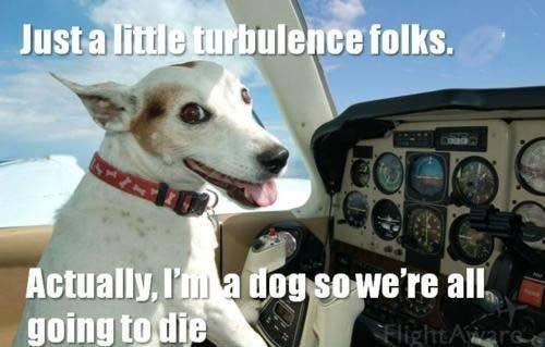Prepare for crash landing.