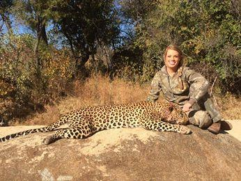 Cheetah Death