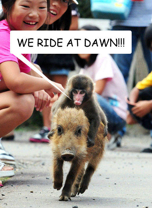 At Dawn We Ride   Know...