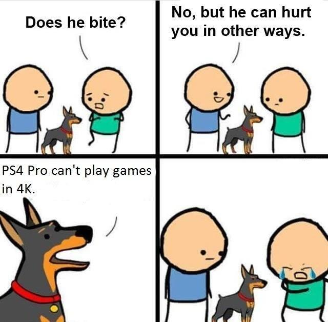 cda does he bite? know your meme,Does Your Dog Bite Meme
