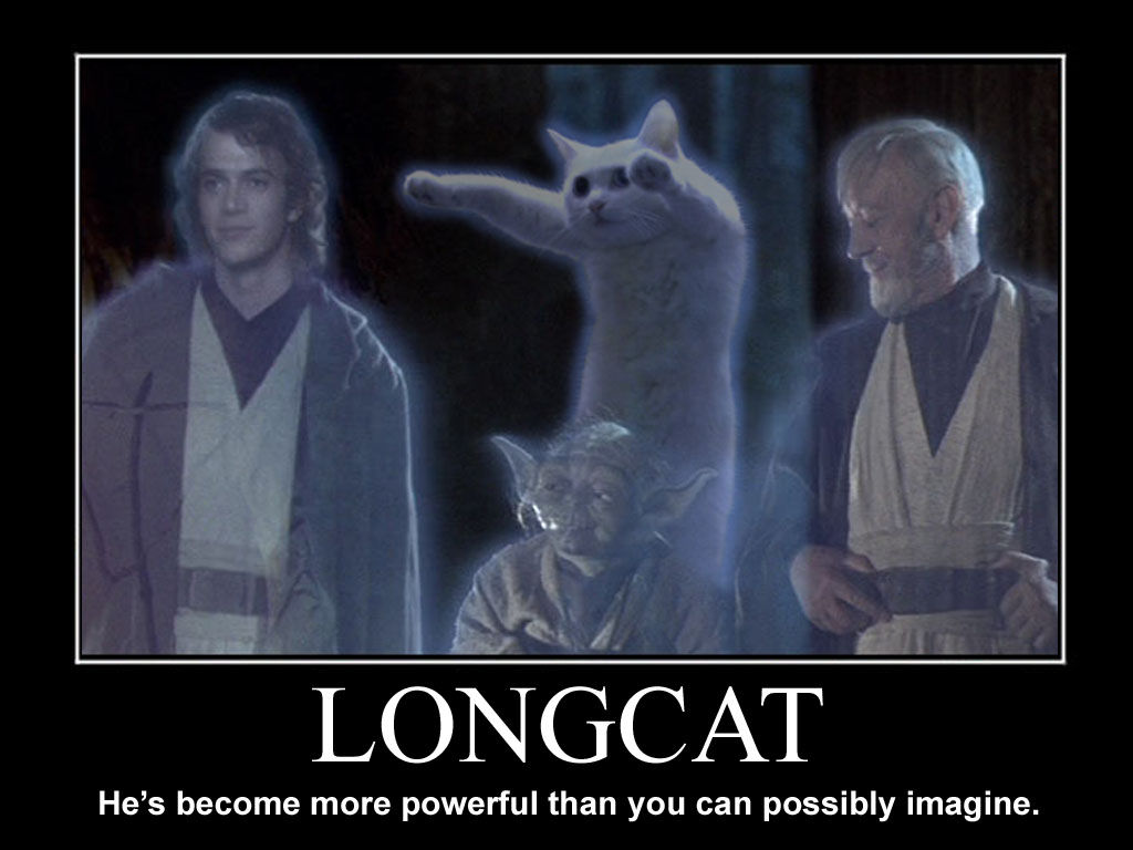Youtube/funny vids/funny pics page - Page 10 Longcat