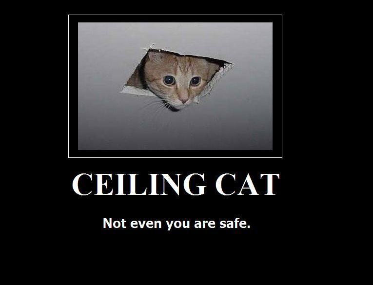 CEILING_CAT_by_deazralei.jpg