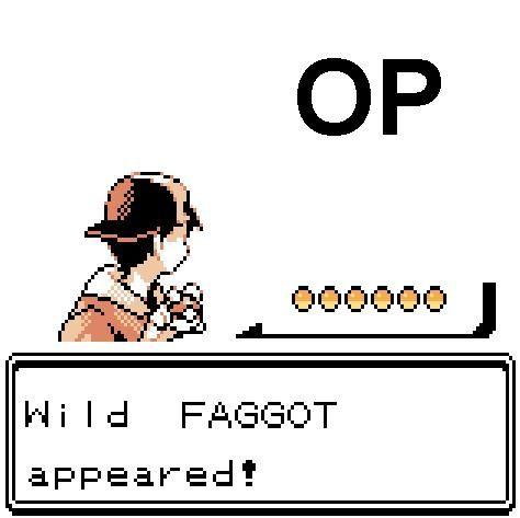 [Image: op_faggot_pokemon.jpg]