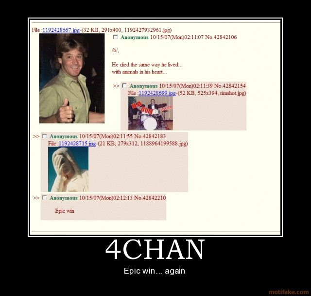 4chansteveirwin4chanblolepicwindemotivationalposter