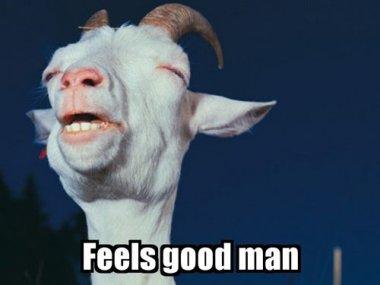 feels-good-man-goat-squint-12883904505.j