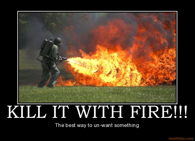 Kill It With Fire Demotivational Poster 1235695993