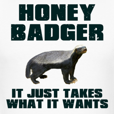 Honey badger dont give a shit - photo#11