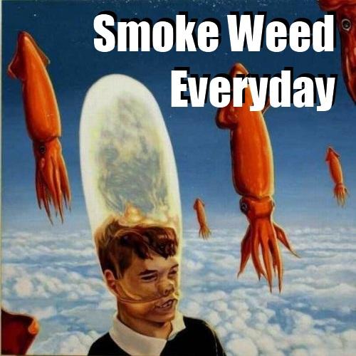 Funny Meme Everyday : Smoke weed everyday meme memes