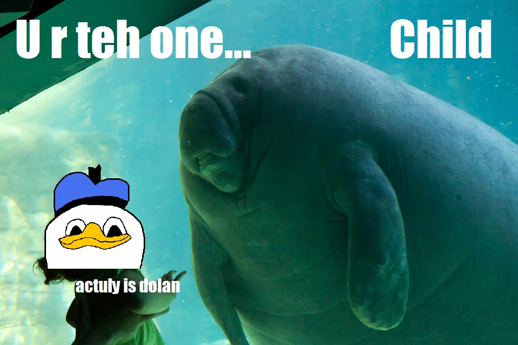 pls overlord manatee know your meme