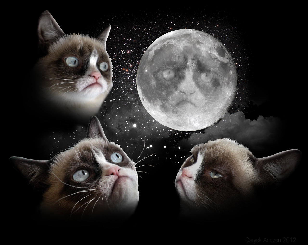 Three cat moon three wolf moon know your meme The three cats
