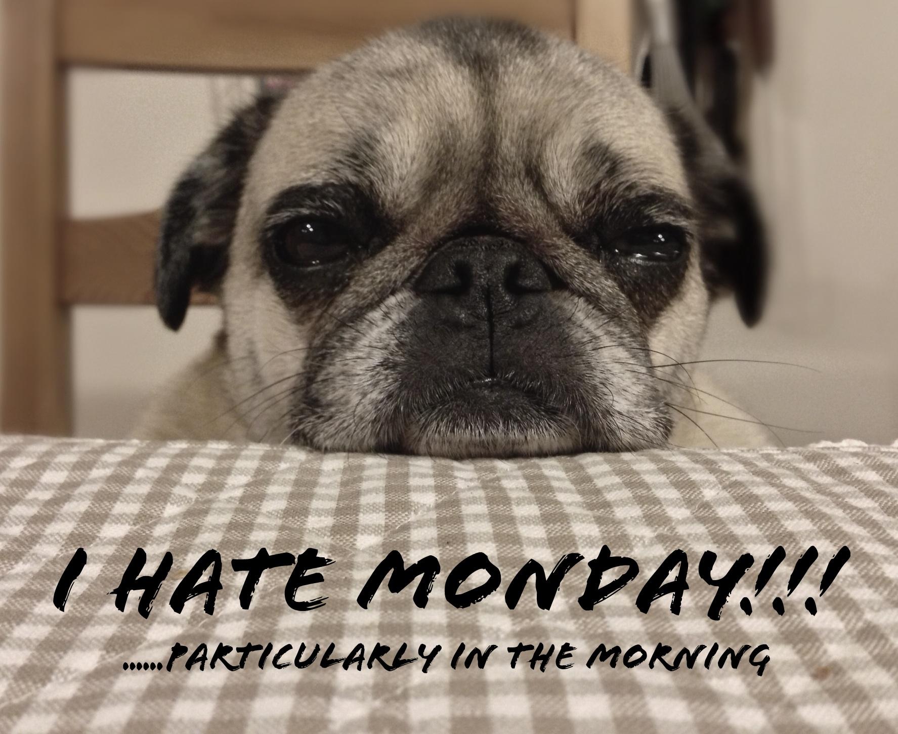 I Hate Monday Images I hate monday |...