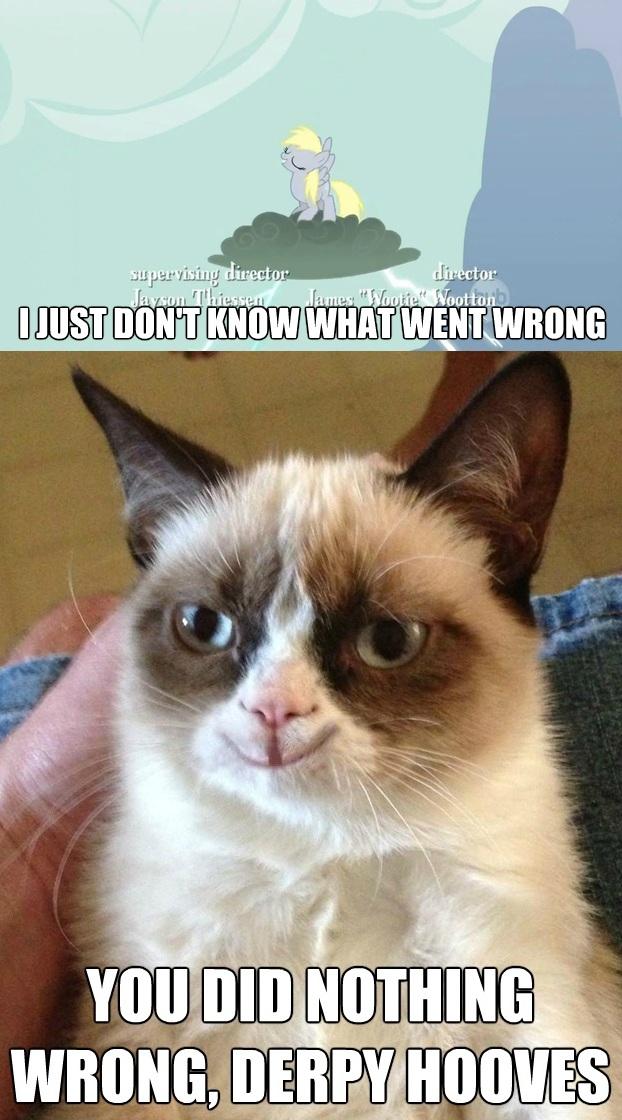 derpy grumpy cat meme
