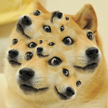 Lost Doge Meme