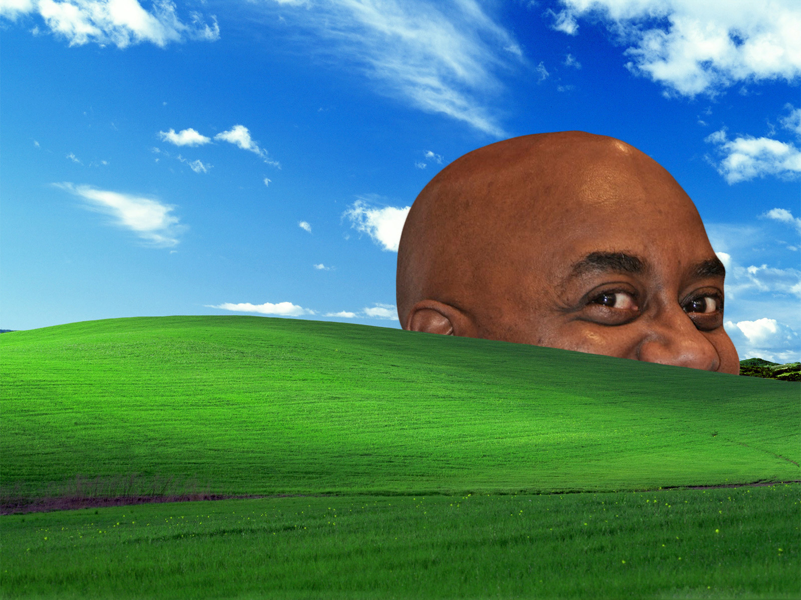 ainsley bliss windows xp bliss wallpaper know your meme