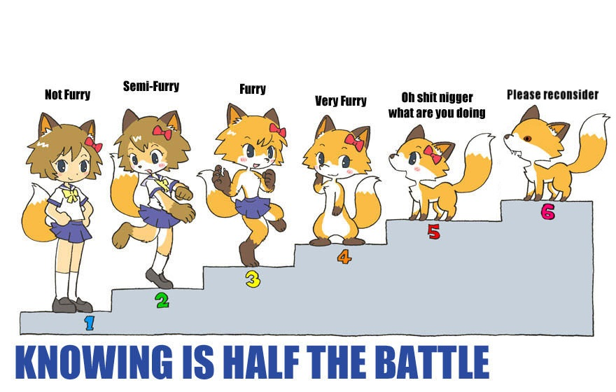 six stages of furry furry scale know your meme