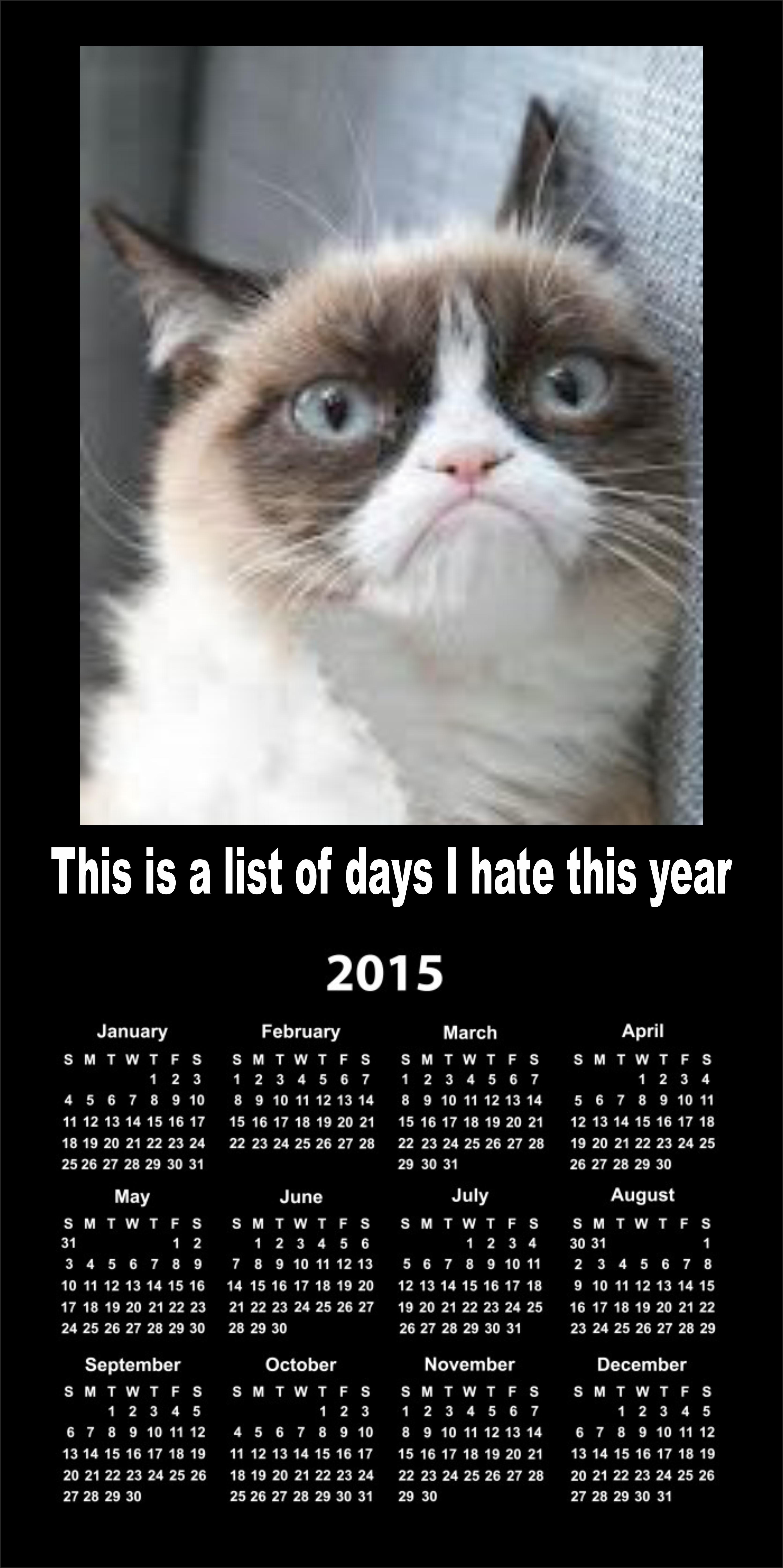 Grumpy Calendar 2015 Grumpy Cat Know Your Meme