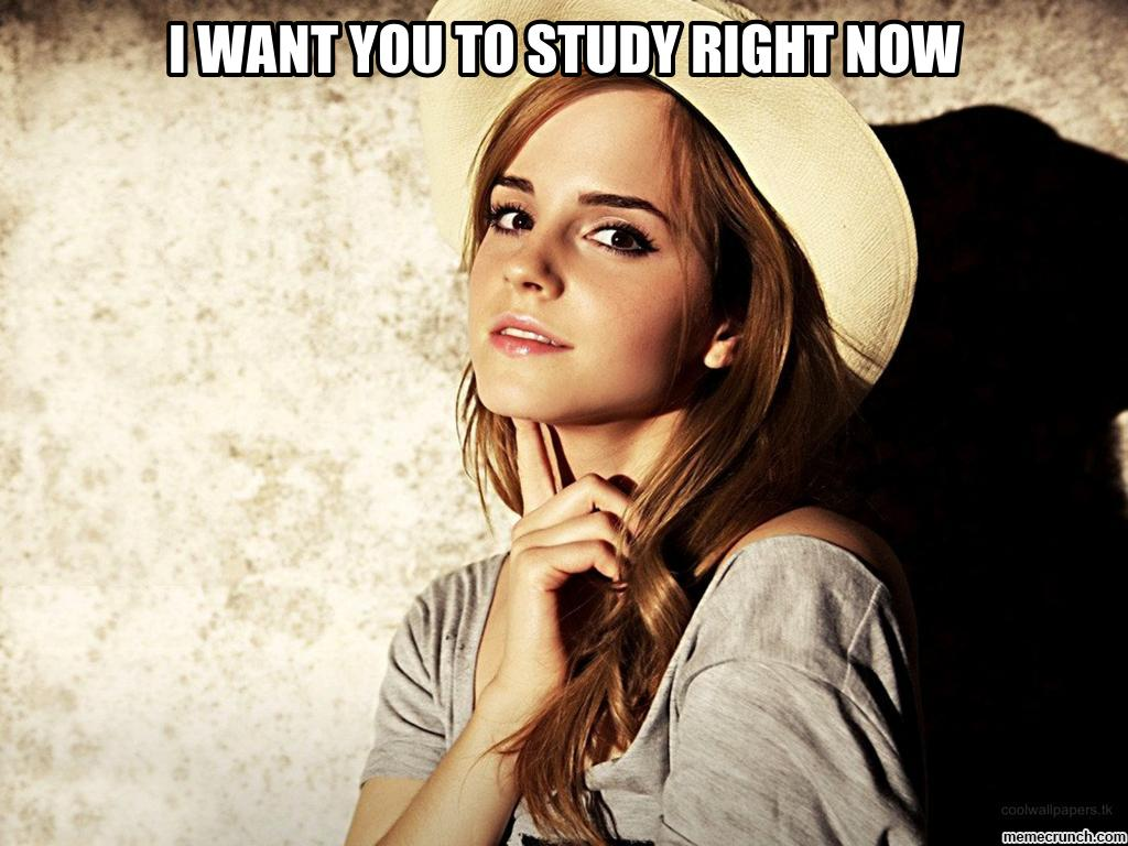 You Should Be Studying Wallpaper
