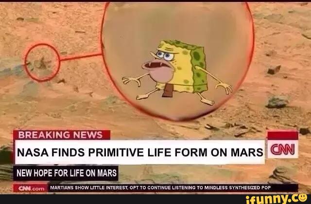 NASA finds primitive life form on Mars | SpongeGar ...