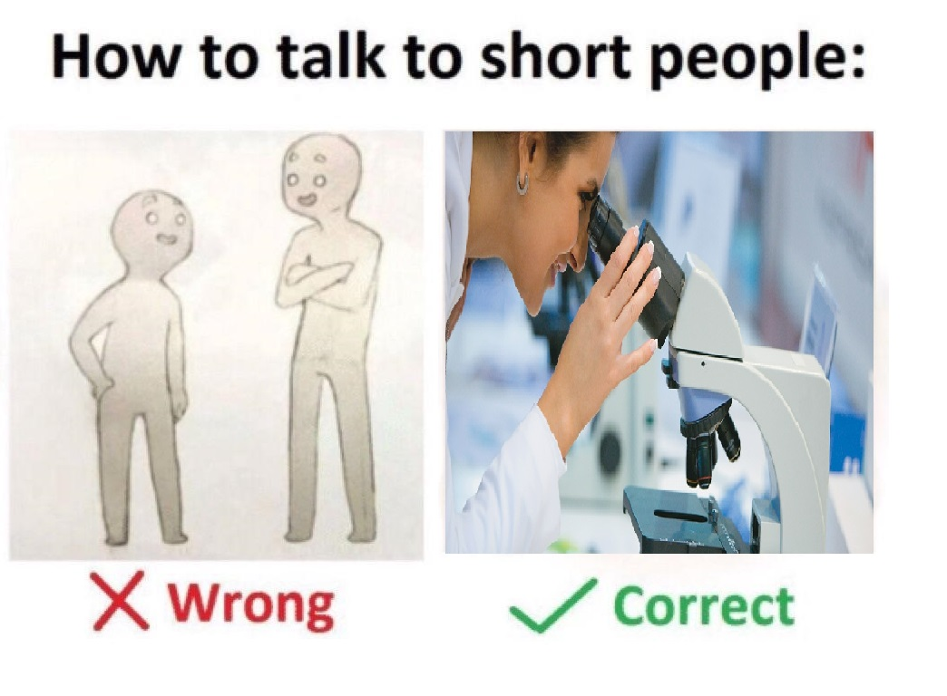 how to talk to short people   How To Talk To Short People ...